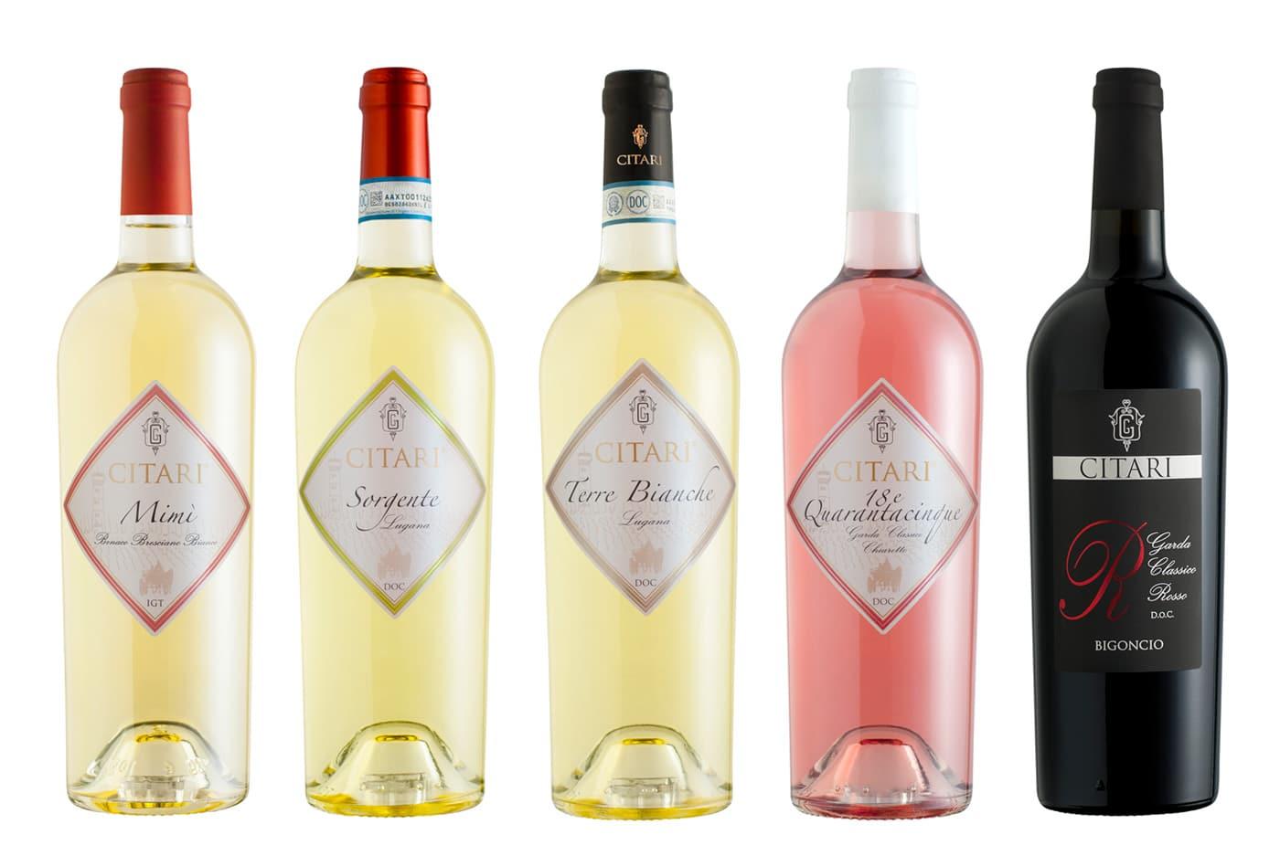 still life bottiglie di vino